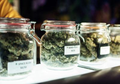 Medical Marijuana in Melbourne FL