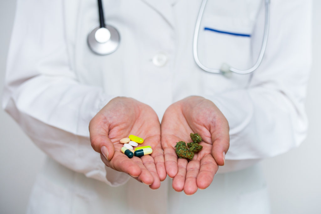 Doctor hand holding medical marijuana and prescription pills